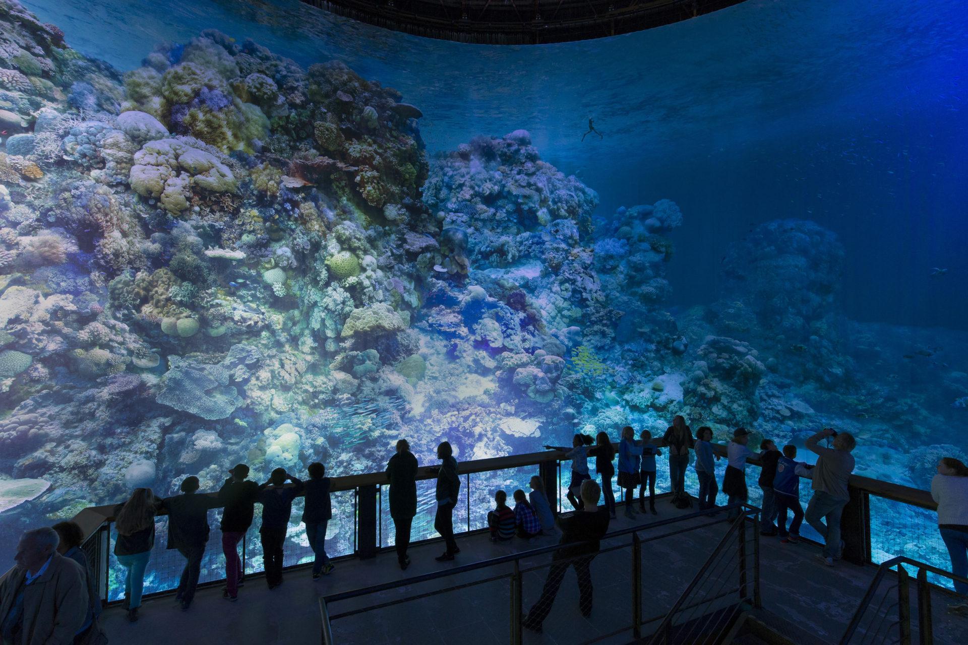 Nova atração no Panorama XXL : A grande barreira de corais, uma obra de YADEGAR ASISI